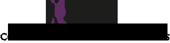 ICASA Logo